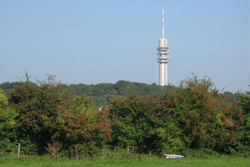 Wandelroute rosande polder 5 2 km wandelen in oosterbeek - Goede hoek televisie ...